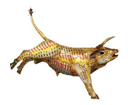 pataka-bull-web.jpg